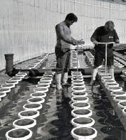 Аэраторы трубчатые и дисковые