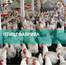 Промышленные очистные сооружения для птицефабрики